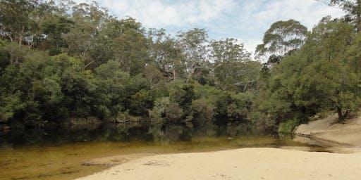 Bush Explorers - Landscapes of Campbelltown - Simmo's Beach Reserve