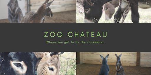 Full Animal Experience (with Kangaroo Feeding) at Zoo Chateau