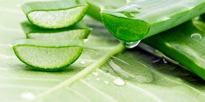 Jarní detoxikace prakticky