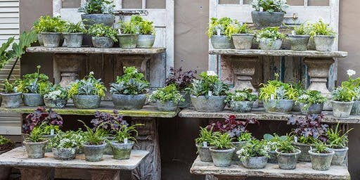 New Spring Container Concepts with Kathleen Nestell & Sarah Smith