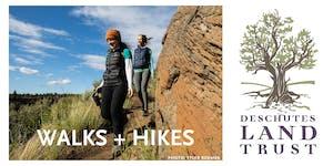 Lake Creek Trail Hike, Metolius Preserve