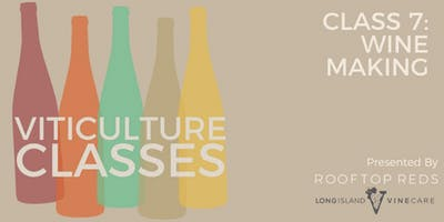Viticulture Classes- Class Seven: Wine Making