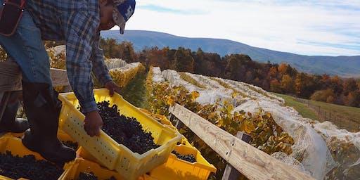 """Virginia Made"" Wine Pairing Dinner - Lucinda Smith of Blue Ridge Libations"