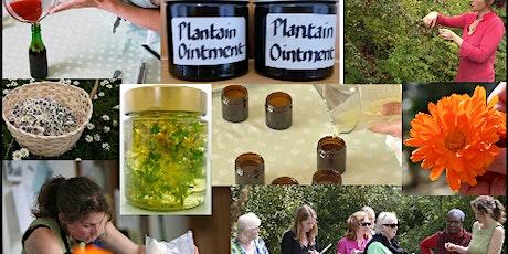 Herbal Medicine for Aromatherapists tickets