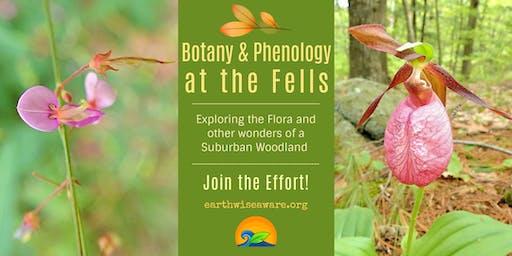 Fells' Biobliss » Botany & Phenology at Long Pond
