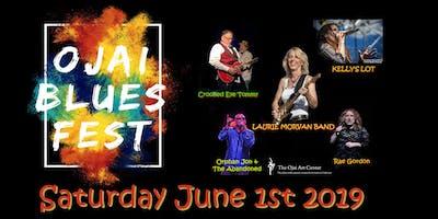 Ojai Blues Fest #4