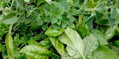 2 Gals in a Garden - Herbs for Cuisine