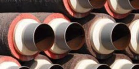 Pipeline Corrosion and Integrity Management: Kuala Lumpur tickets