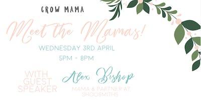 Meet the Mamas!