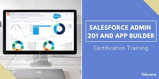 Salesforce Admin 201 and App Builder Certification Training in Terre Haute, IN