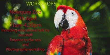 SNAP AND LEARN NEWQUAY ZOO PHOTOGRAPHY WORKSHOP FOR HOME EDUCATED CHILDREN AGED 5-16 YEARS. tickets