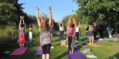 Mid Summer Yoga at RSPB Ham Wall