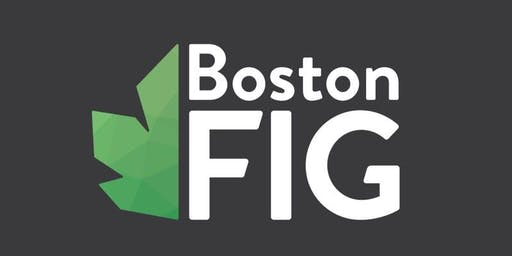 2019 BostonFIG Fest Digital Showcase Submission