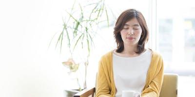 Meditation Introductory Seminar