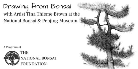 Drawing Bonsai with Artist Tina Thieme Brown tickets