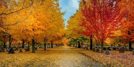 Arkansas Fall Colors Photo Workshop tickets