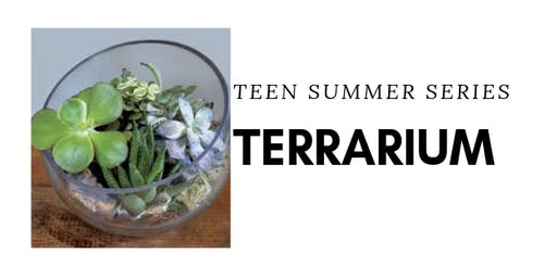 TEEN DIY Terrarium