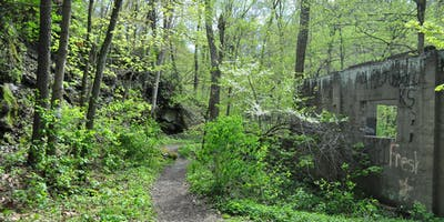 Friends of Dead Man's Hollow Ruins Workday