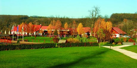History and Tradition: Gödöllő and its surroundings tickets