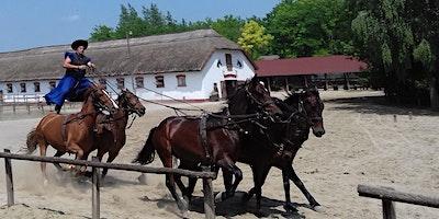 The PUSZTA Horse Show - Lajosmizse
