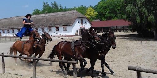 The 'PUSZTA' Horse Show - Lajosmizse