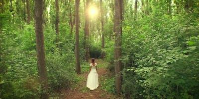 Pleasant Detox: Wholesome, Healing, Spiritual  Retreat in Nature