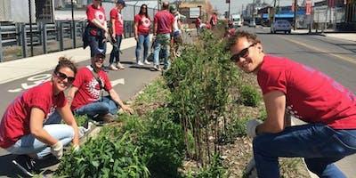 Community Volunteer Days on the Greenway!