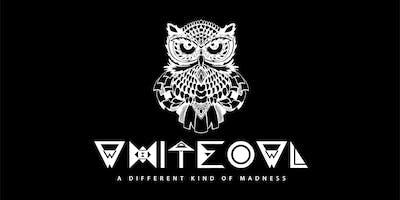 White owl music festival
