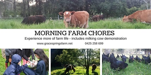 Grace Springs Farm - Morning Chores Tour -