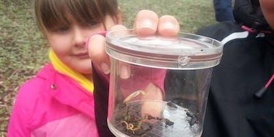 Bug Hunt at Smithills Hall