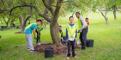 Community Volunteer Days