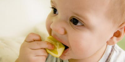 Introducing Solids - for parents starting to feed baby solid food DSCC 21/05/2019