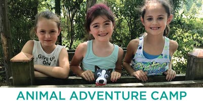 VBSPCA Animal Adventure Camp | August 12-16 (Ages 9-12)