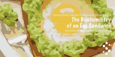 Spring Break Teacher PD: The Biochemistry of an Eg