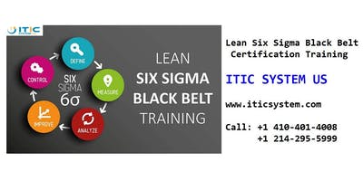 Lean Six Sigma Black Belt (LSSBB) 4 Days Workshop in Springfield, IL