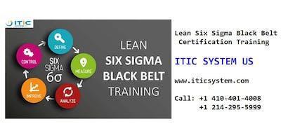 Lean Six Sigma Black Belt (LSSBB) 4 Days Workshop in Little Rock, AR