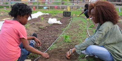 2019 City Farmers Sign Up
