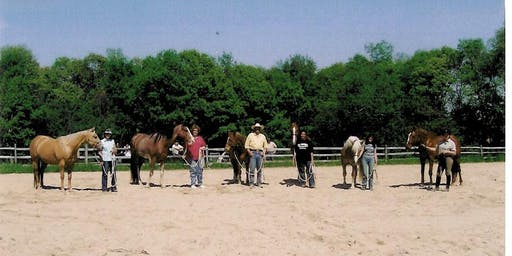 Horsemanship Clinic- Working in a group, we better our horsemanship skills