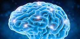 Introduction to Brain Gym in Manistee