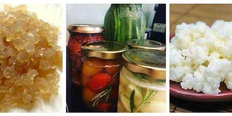 Water/Milk Kefir & Lacto-Fermentation Workshop with Jaslyn tickets