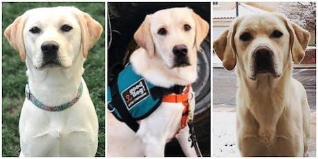 Good Dog! Autism Companions Graduation - Summer 2019  Teams tickets