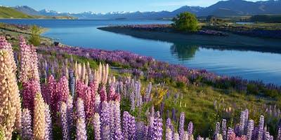 AMA Travel & Goway present New Zealand - Red Deer