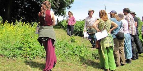 Forest Garden Workshop tickets