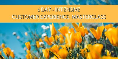 1 Day Intensive Customer Experience Masterclass
