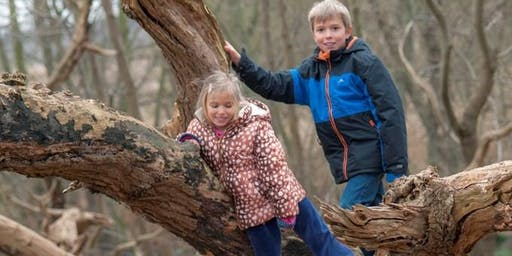 RSPB Minsmere Wild Woods Forest School