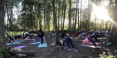 My Wild Life: Outdoor Yoga