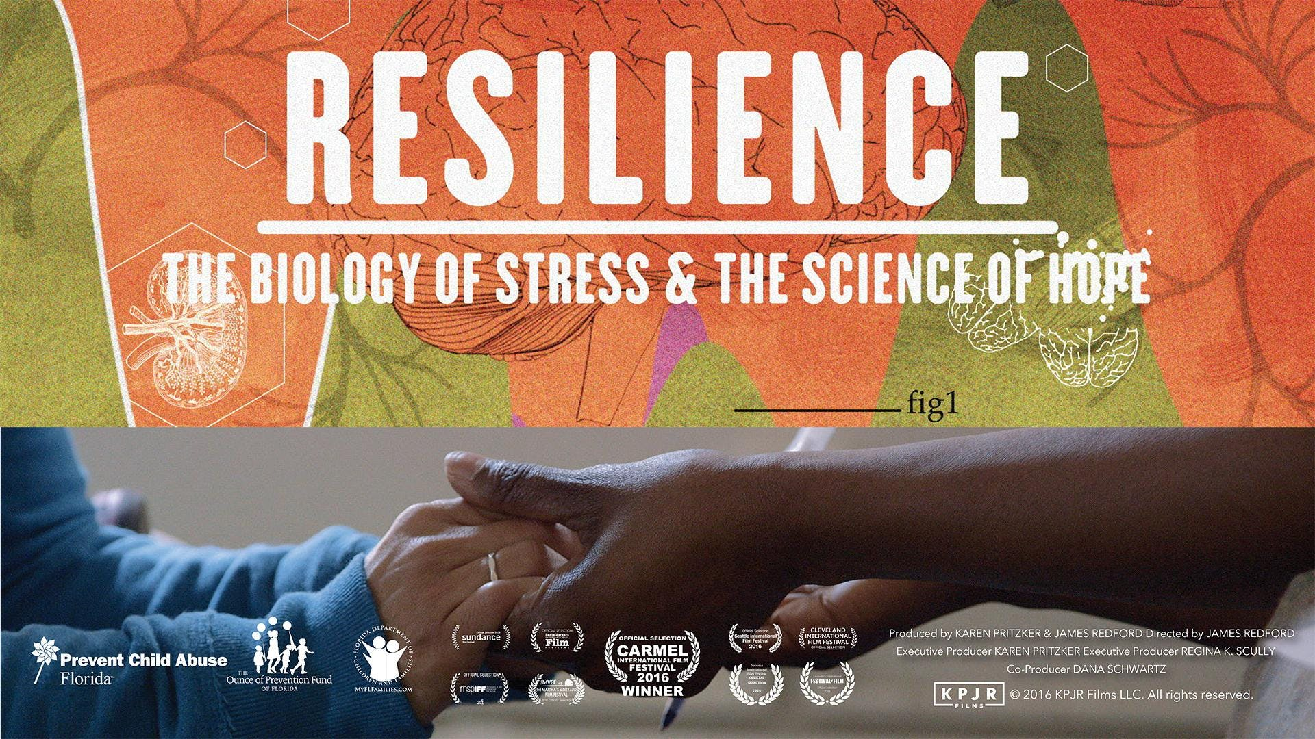 Resilience: The Biology of Stress and the Sci