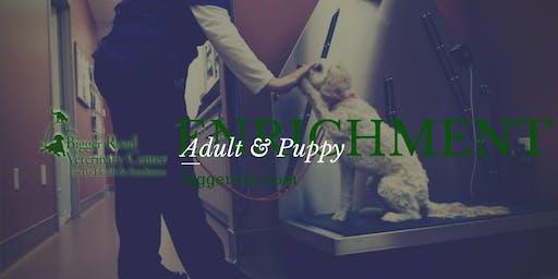 Happy Nail Trims - Dog Behavior Workshop