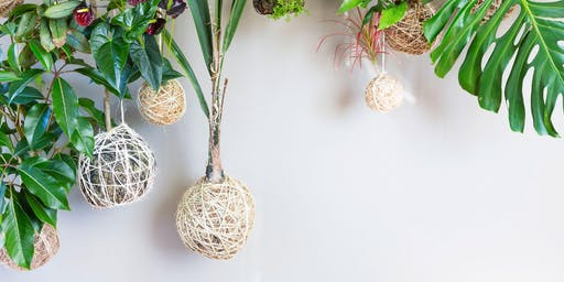 Sustainable Living: Kokedama Making