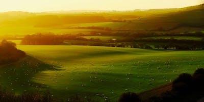 RSA Wales/Cymru: Wellbeing of Future Generations